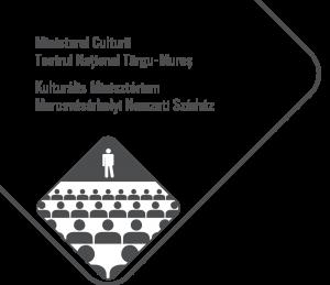Teatrul Național Târgu-Mureș (Targu Mures)
